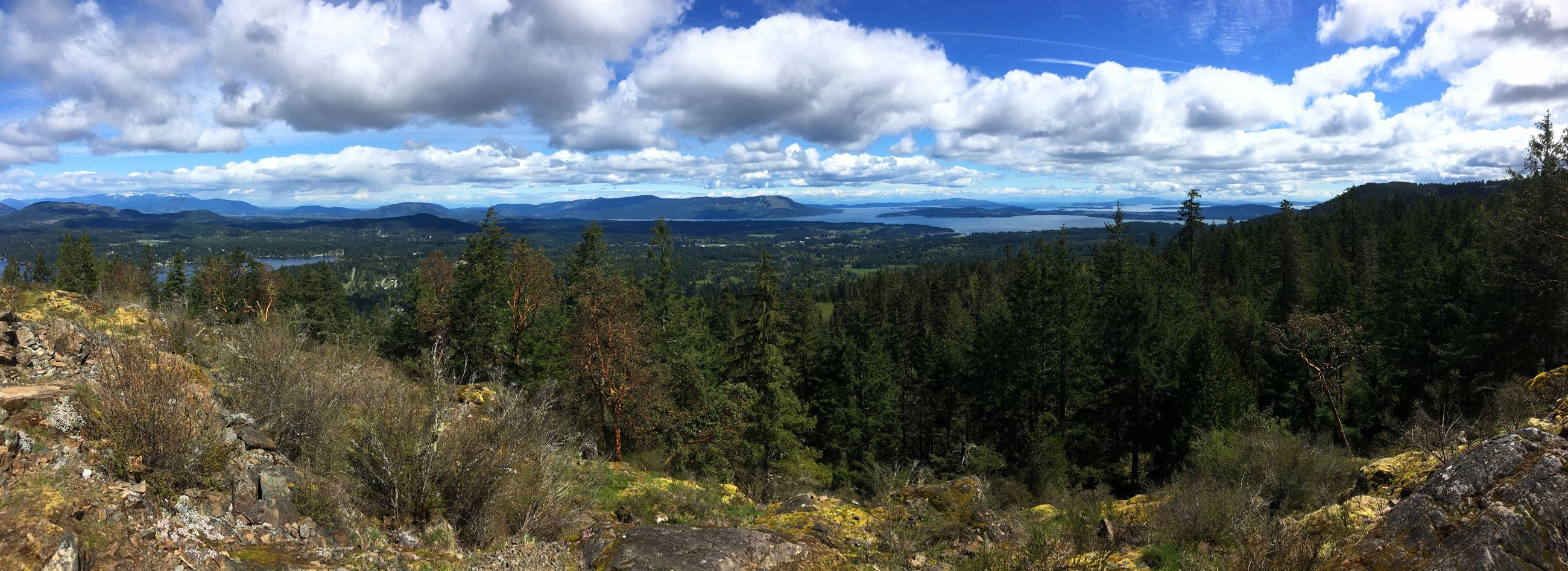 South Cowichan Panorama