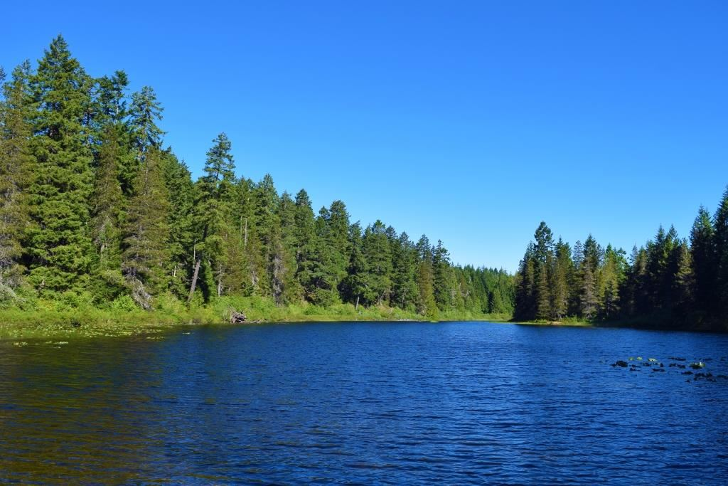 My Lake Home
